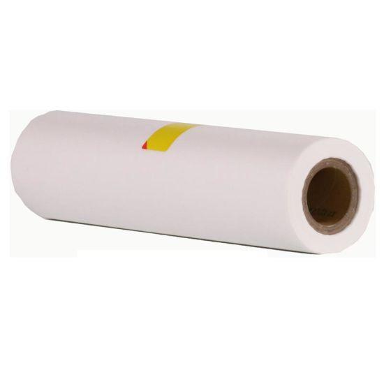 Gestetner CPMT 2430 A4 Master Roll